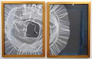 Crinoline by Melissa Wilgis