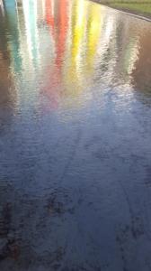 Reflection Pond by Joan Farrenkopf