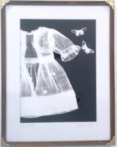 Antique Dress, Butterflies by Melissa Wilgis