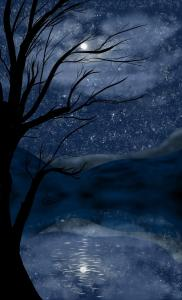 """Moonlit Mountain""Akira Collins"