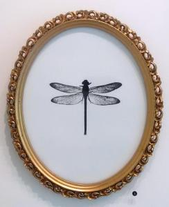 Dragonfly by Melissa Wilgis