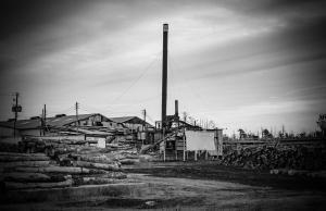 """Lumber Yard""by Karen Moody"