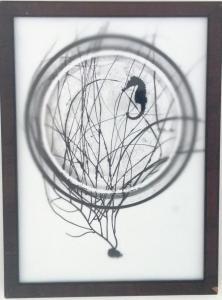Seahorse, Seawhip, Underwater Orb by Melissa Wilgis