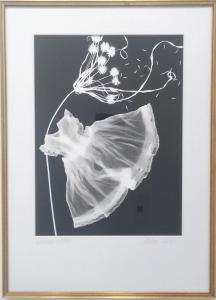 Windswept on Black by Melissa Wilgis